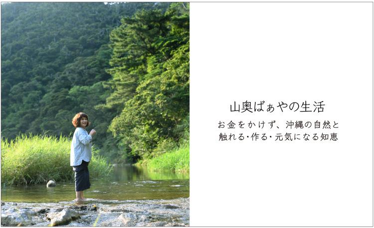 山奥ばぁやの生活 お金をかけず、沖縄の自然と触れる・作る・元気になる知恵