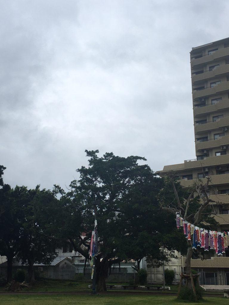 5月16日 今日から梅雨入り!