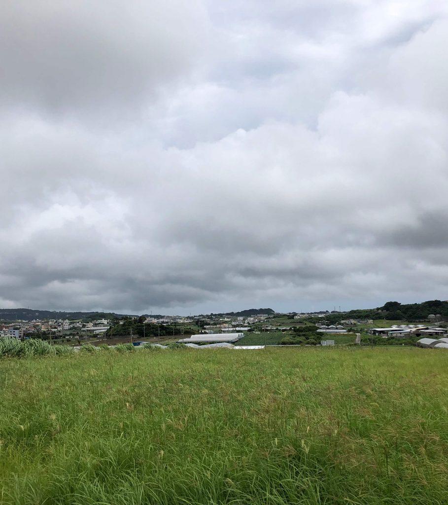 6月4日(旧暦 5月2日) 午前中は曇り、午後から大雨
