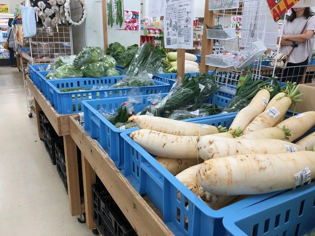 【宜野座村(ぎのざそん)にある「道の駅ぎのざ」の野菜売り場のコーナー】