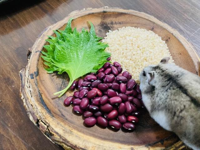 フチャギ材料 玄米ごはん、小豆、シソの葉にハムスターくる